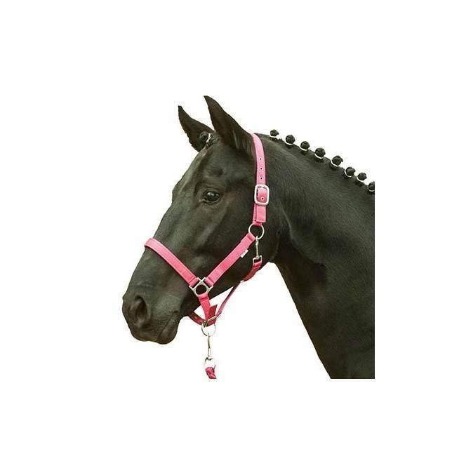 Cabezada para caballo HKM Stars Softice rosa fuerte