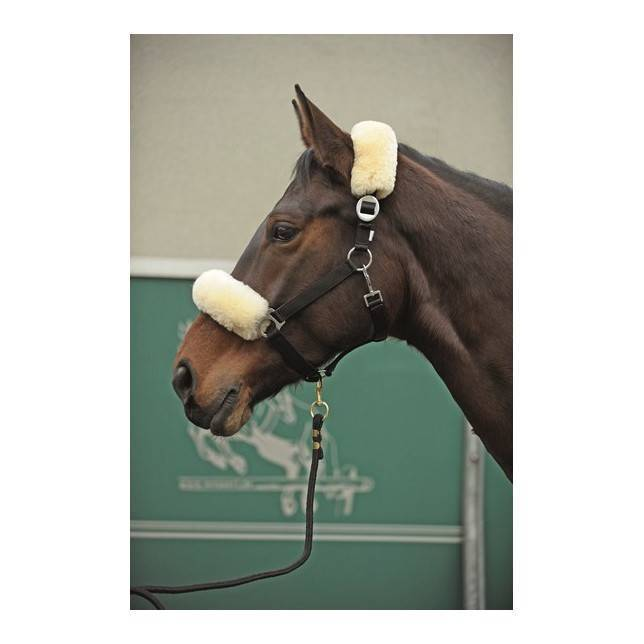 protector nariz caballo, protector nuca caballo, protector caballo