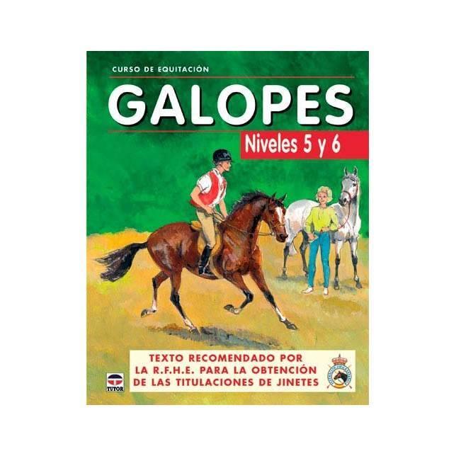 curso equitacion, libro equitacion, libro doma, libro hipica