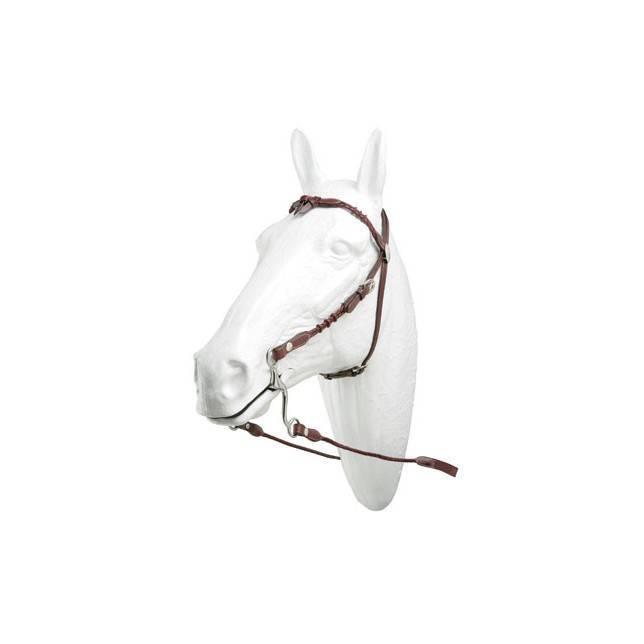 cabezada tejana, cabezada caballo
