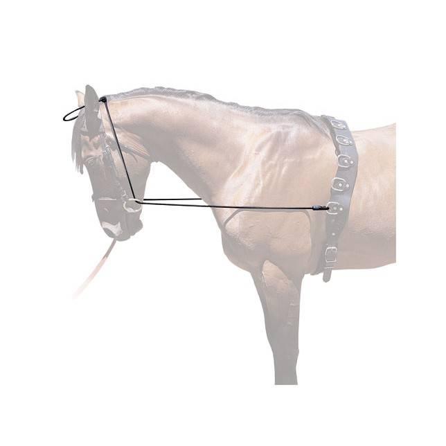 chambon jinete, chambon caballo, chambon hipica