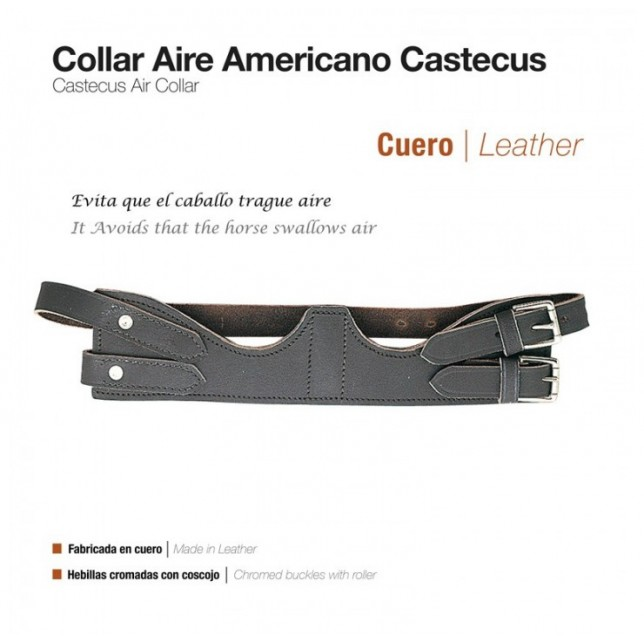 COLLAR DE AIRE AMERICANO CASTECUS