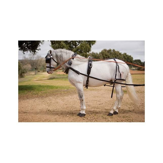 enganche caballo, cabezada, collarin enganche, pechopetral, riendas enganche, tiros enganche, sudadero caballo