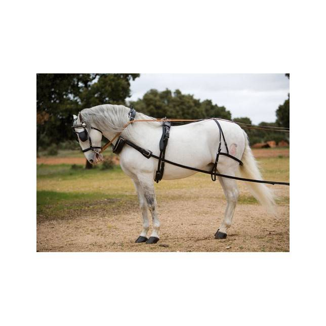 enganche collarin, enganche limonera, enganche caballo, enganche siegen