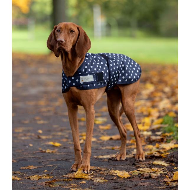 Manta para perros Outdoor Pünktchen, light