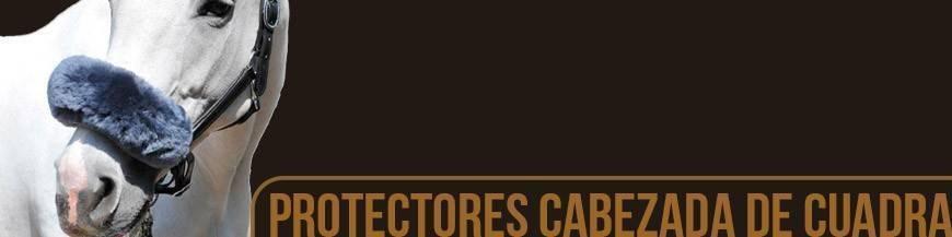 PROTECTORES PARA CABEZADA DE CUADRA